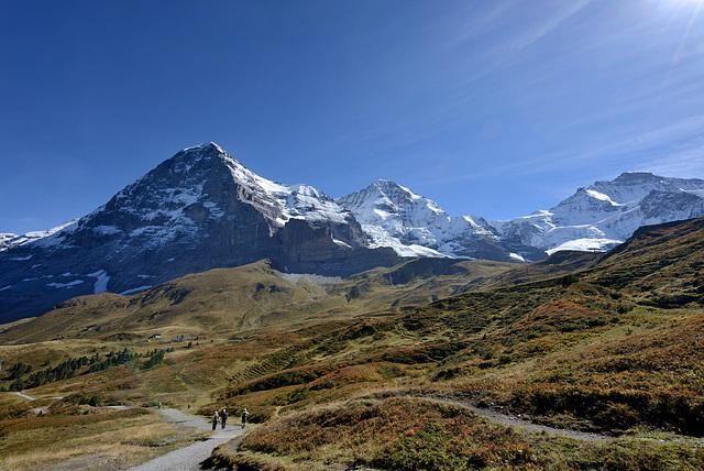 Promenade dans l'Oberland bernois...