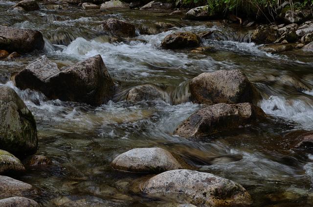 Dolina Roztoka