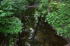 20140520 3396VRAw [D~DU] Bach, 6-Seenplatte, DU-Wedau