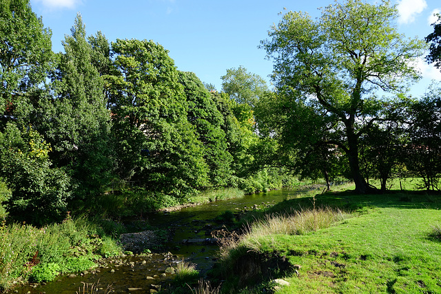 Late Summer / early Autumn at Pendle Water, Brierfield.