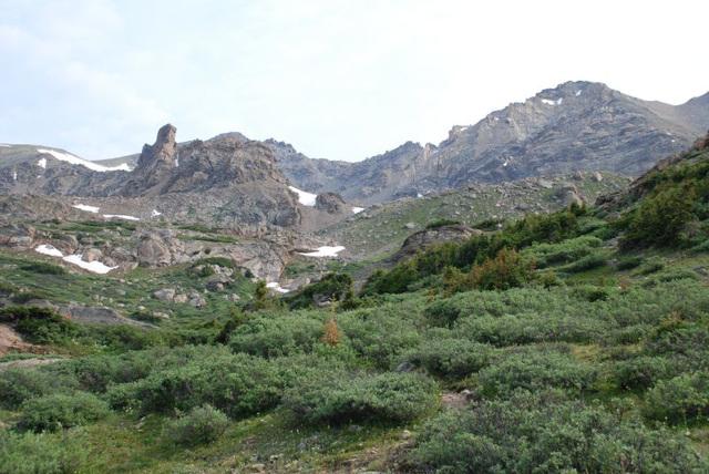 Meadow and Ridgeline