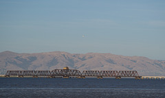 Dumbarton Rail Bridge SF Bay (0431)