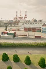 Cranes & Container