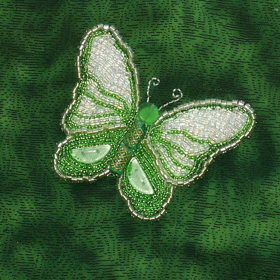 A Butterfly in green