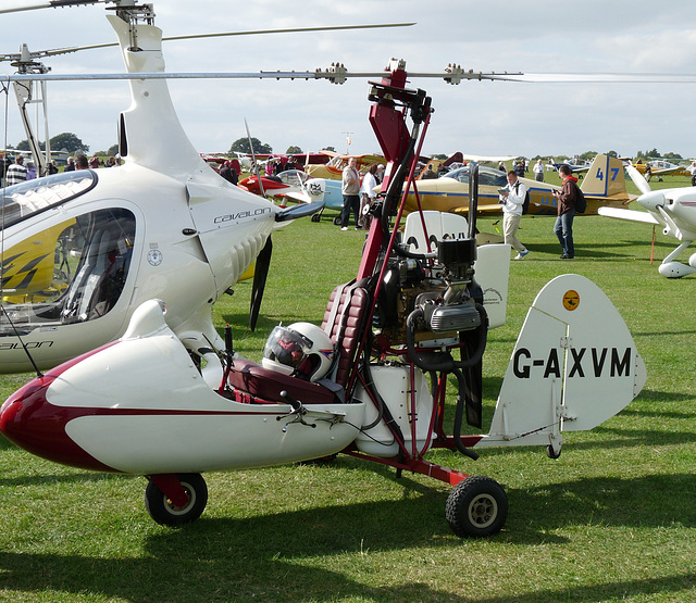 Campbell Cricket G-AXVM