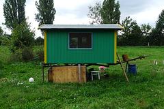 huehnerhaus-1170101