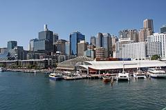 Sydney from Darling Harbor