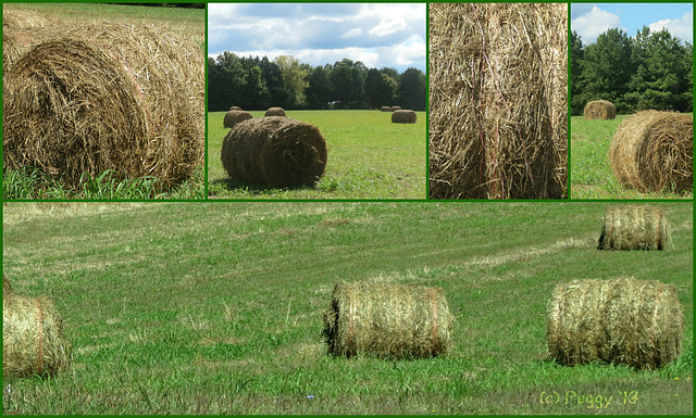 collage of bales
