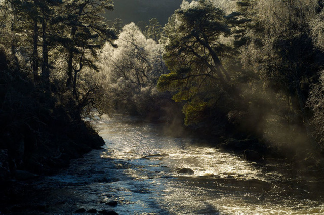 River Affric, Glen Affric, Scottish Highlands