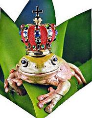 ranoreĝo (Froschkönig)