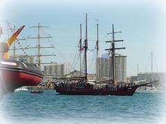 """...à admirer ces voiliers de légende...on devient un peu """"pirate""""..."""