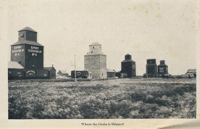McElhinney - Outlook - Where the Grain is Shipped