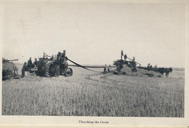 McElhinney - Outlook - Threshing the Grain