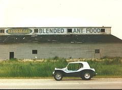 Blended Ant Food?