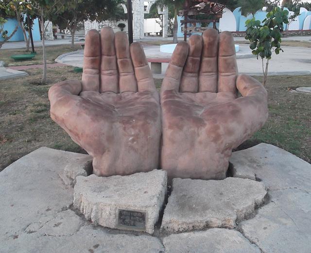 Mains de jardinier / Gardener's hands.
