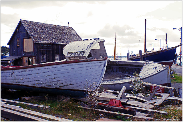 The boatyard, Lunenburg