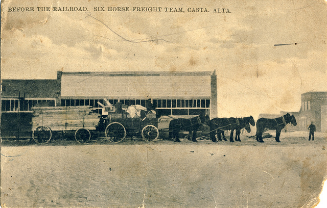 Before the Railroad. Six Horse Freight Team, Casta. Alta.