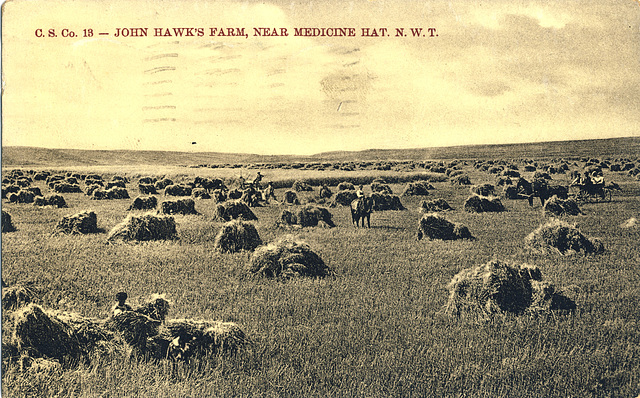 John Hawk's Farm, Near Medicine Hat, N.W.T.