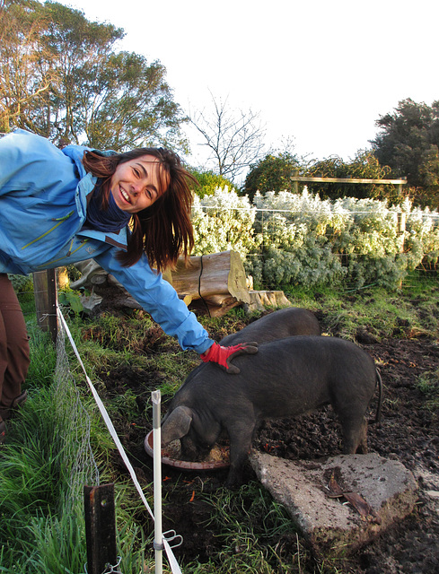 Claire and the piglets