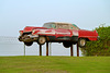 Sharjah 2013 – Sharjah Classic Cars Museum – Cadillac