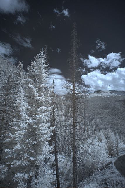 Misc Infrared