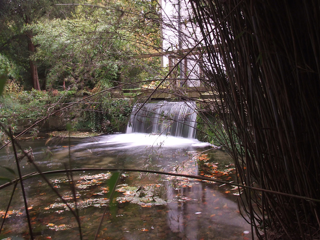 Waterfall at Scampston