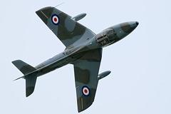 Hawker Hunter T.7 (c)