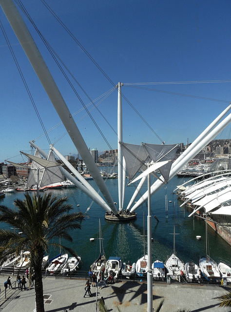 Genova, porto antico - Il Bigo