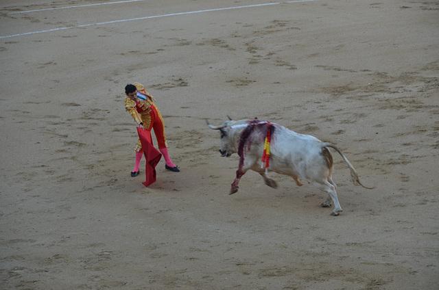 Madrid Bullfights