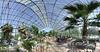 Cactus House Panorama - 50 Megapixels