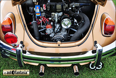 1972 VW Beetle - FFW 679L