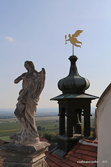 The scene from the top of Haydn's Church in Eisenstadt