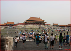 Fourmilière chinoise
