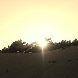 Dune (14)