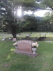 Fleurs funéraires / Funerary flowers.