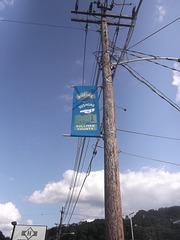 Electric county / Comté électrique