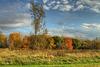 Doux ciel d'automne