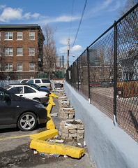 A Minneapolis small protected oasis area, between a lineup of parking curbs and a chainlink-topped wall.