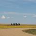 Badlands Natl Park, SD (0275)