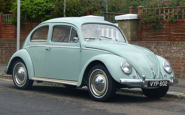 Another Beetle in Lee - 30 May 2014