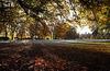 A Frosty Autumn Morning, Foulis, Evanton, Ross-shire, Scottish Highlands