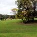 jenisch-park-1170428 DxO-k