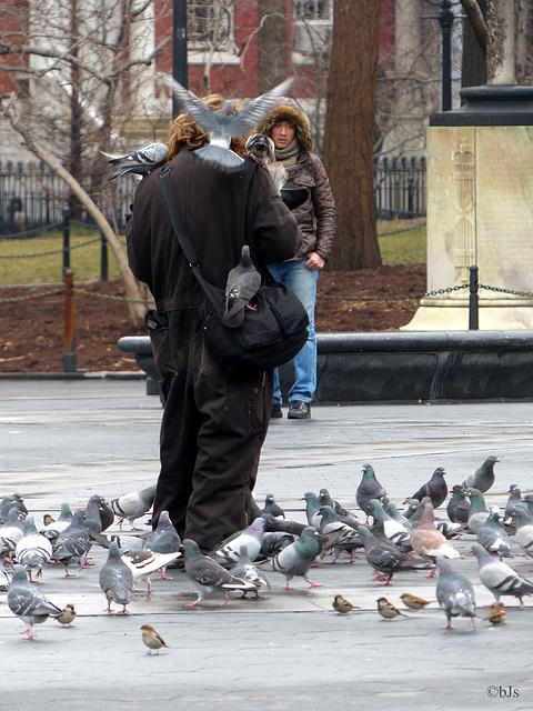 The birds man