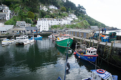 Polperro Harbour. 8