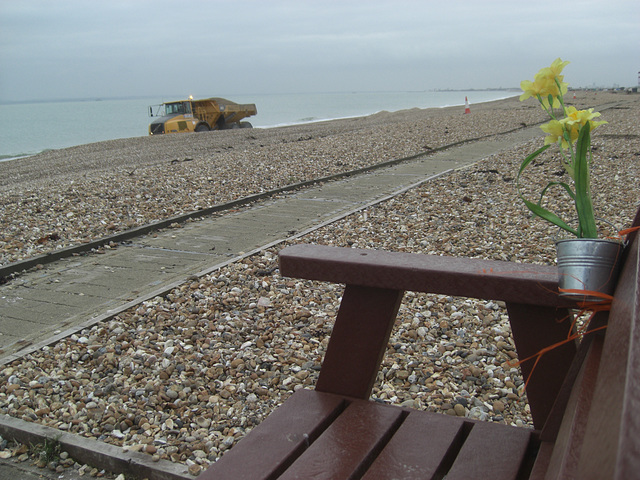 Tonka Toy and daffodils on Hayling Beach