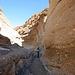 Mosaic Canyon (3512)