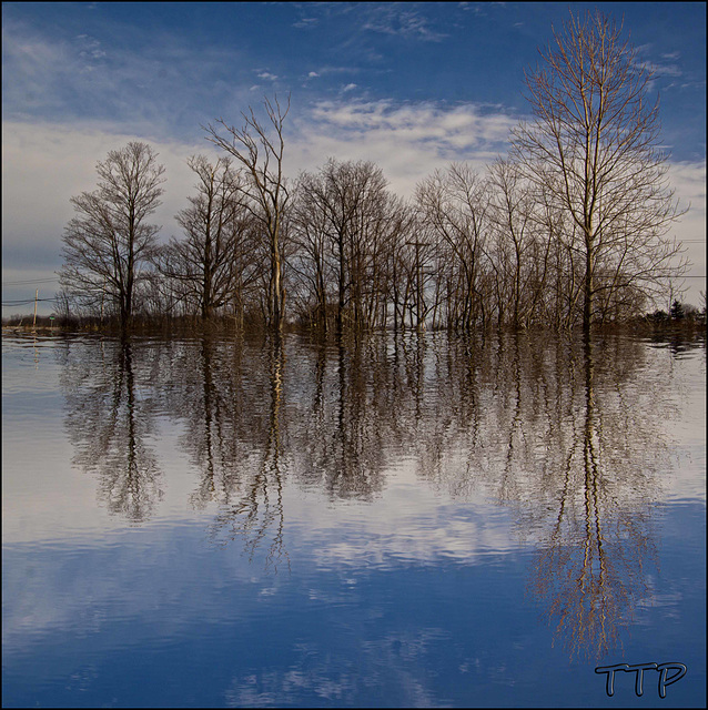 reflection in blue