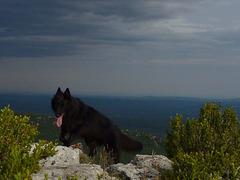 20140624 Fee Mt Baudile (46) al
