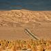 Death Valley Hwy 190 (3428)