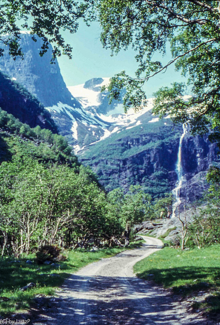Norway 1970, Brixdal - 8.6.70 (270°)